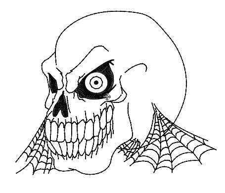 Skull with Web